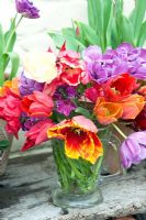 Colourful cut Tulips in glass jug