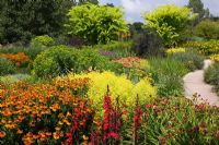 Square Garden at RHS Rosemoor with Achillea 'Paprika', Helenium 'Sahin's Early Flowerer' AGM, Monarda 'Prairienacht' and Solidago 'Goldenmosa' AGM