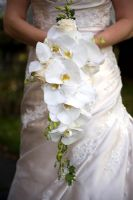 Bride holding a wedding bouquet of white moth orchids