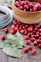 Making a Cranberry and Bay leaf decorative ring - Cranberries, bay leaves and wire