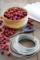 Making a Cranberry and Bay leaf decorative ring - All items needed, cranberries, wire, pliers and napkins