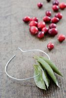 Making a Cranberry and Bay leaf decorative ring -  thread the bay leaves on to the wire