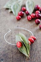 Making a Cranberry and Bay leaf decorative ring -  thread the cranberries on to the wire either side of the bay leaves
