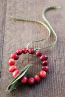 Making a Cranberry and Bay leaf decorative ring - finished decoration with ribbon for hanging