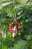 Making a Cranberry and Bay leaf decorative ring - finished decoration hanging from a tree with ribbon