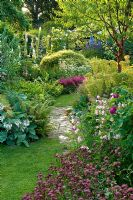 Traditional English cottage garden with brick path between shady borders of Prunus serrula - Cherry tree, Geranium, Astilbe, Euphorbia characias, Hosta, Rosa, Penstemon and Astrantia. Carol and Malcolm Skinner, Eastgrove Cottage, Worcs, UK