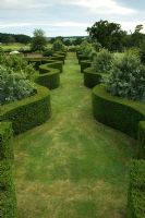 Elevated view of wide grass path bordered by wavy Taxus - Yew hedging. Robinson garden, Ousden House, Suffolk