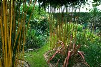 Exotic style planting with bamboo and Phormium