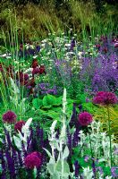 Mixed border eith Allium, Nepeta, Bearded Iris, Orlaya, Stipa gigntea, Verbascum and Salvia - The Telegrapgh Graden at RHS Chelsea Flower Show 2006
