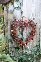 Autumn rustic decoration with red and orange berries