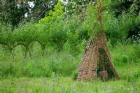 Woven willow tepee with tree trunk seat, in front of living Willow arched hurdles
