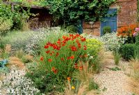Gravel garden in late summer with perennials and grasses - Helenium, Eryngium and Euphorbia