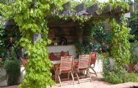 Vitis- Grape Vine on oak pergola, table and chairs in small urban garden with terracotta tiles