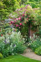 Pathway leading through perennials to a rose-covered brick wall with iron gate and brick wall with climbing Rosa 'Chevy Chase',  'Kiftsgate' - rambling Roses and R. 'Rosarium Uetersen' and  'Veilchenblau'. Catalpa bignonioides, Centranthus ruber 'Albus' and Salvia nemorosa in borders
