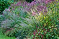 A Planting in the 'New Perennial Style' at Weihenstephan Gardens, German - Eupatorium persicaria ampexicaulis 'Taurus', Stipa brachytricha and Calamagrostis brachytricha