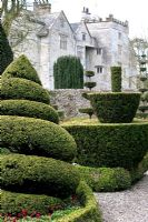 Unusual topiary shapes at Levens Hall Garden, May
