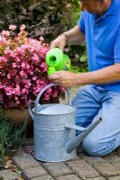 Adding liquid feed to a watering can for feeding plants in containers or grow bags. High potash liquid fertilizer