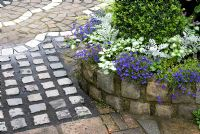 Path and wall made of small reclaimed cobbles and raised bed with Lobelia, Cineraria, Lamium and Buxus -  Brocklebank Road, Southport, Lancashire NGS
