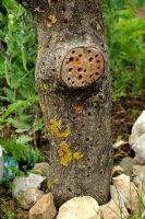 Recycled dead stump used as an insect house