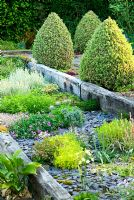 Raised beds made with weathered railway sleepers and mulched with blue slate. A path behind is framed with two lines of Buxus sempervirens 'Elegantissima' clipped into cones - Ivy Croft, Leominster, Herefordshire, UK