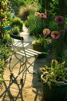 Garden chairs on path below pergola surrounded by pots of Allium 'Purple Sensation' - Ivy Croft, Leominster, Herefordshire, UK