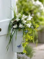 Bouquet of Aquilegia - Columbine, Clematis alpina and grasses in old milk jug attached to door handle