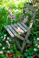 Child's garden seat in polyanthus bed