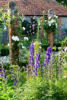 Brick pillars in farmyard garden planted with Rosa 'Iceberg' and Clematis with herbaceous plants including Lupins, Digitalis - Foxgloves, Aconitum and many varieties of hardy Geranium. Dorset, UK