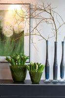 Blue glass vases with Cornus stolonifera 'Flamiravea' branches against the solid and widened green vases with white Hyacinths and Tulips. Picture painted by Friedhelm Raffel behind - Wintergarten, Germany