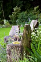 Chairs carved from tree trunks - Holbeach Hurn, Lincolnshire, UK, June