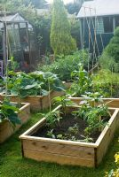 Veg beds with tomatoes, sweetcorn, pumpkins, runner beans, asparagus