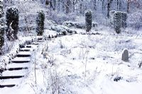 Snow covered steps and Taxus - Yew Pillars - The Wild Garden, Veddw House Garden, December.