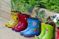 Vegetable plants growing in Wellies