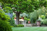 Summer garden with seating area under Morus nigra- Mulberry tree