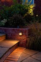 Brick edged steps lit up at night. Anemanthele lessoniana,