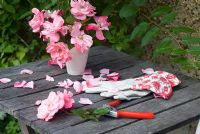 Pink rose flower stems on table with secateurs and ladies gauntlet gloves
