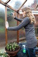 Lady cleaning greenhouse glass