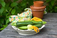 Courgette 'Defender' in dish on wooden table