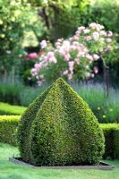 A box topiary shape