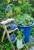 Garden steps with blue pots