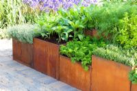 Metal water troughs planted with herbs.