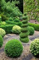 Small topiary garden with Buxus - Box central spiral, Buxus sempervirens and Buxus sempervirens variegata balls in gravel and brick - Pine House