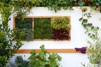 Lettuce and herbs growing in a wall compartment