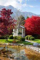 Autumn in a Bavarian garden with natural swimming pool, a white painted wooden pavilion and groups of Buxus spheres. Plants include Acer palmatum