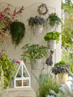 Balcony garden with container plantings of sage, parsley and lavender