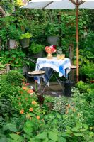 Small decorative kitchen garden planted with herbs, flowers, fruit and vegetables, a small table and chairs and suspended containers filled with salad vegetables