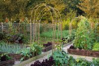 The vegetable garden at Perch Hill in early autumn. Raised beds edged with woven hazel fences. Rustic arches, beans, perilla, salsify.