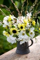 Cut flowers in a pewter jug. Gaura 'The Bride', Cosmos 'Purity', Helianthus 'Vanilla Ice'
