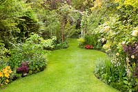 Tapered lawn leading to a wooden rose arch, mature herbaceous borders backed by trees in a suburban garden