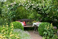 Wooden bench with cushions under a rose arch next to Rosa 'Lykkefund', Buxus,  Phlomis russeliana